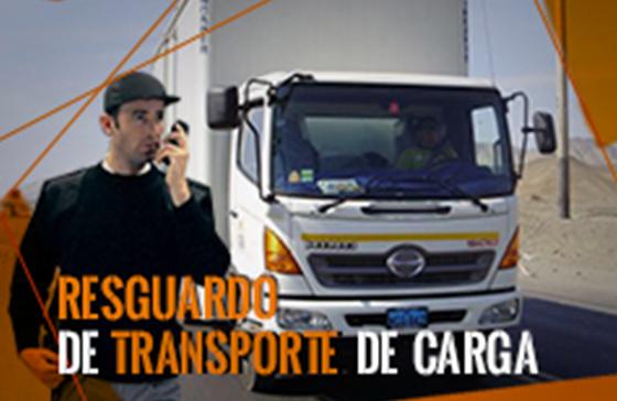 Resguardo de Mercadería en Transito